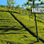 15 Breathtakingly Beautiful Valleys in India !