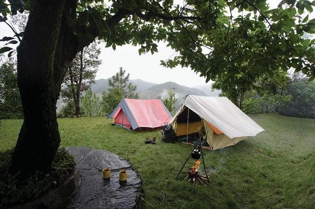 Binsar Camp