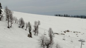 Kashmir- Gulmarg Valley, Things to do in Kashmir