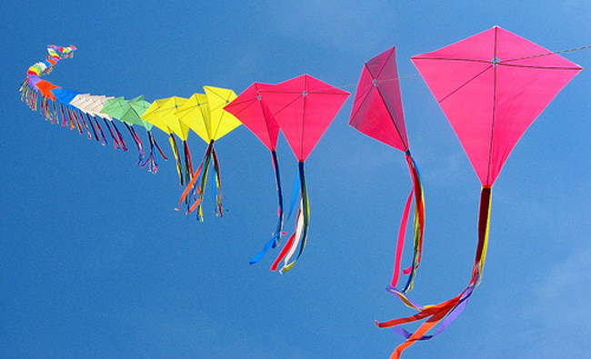 Kite Festival in Jodhpur