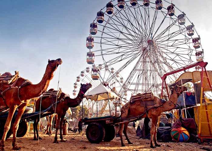 Rajasthan-pushkar-fair