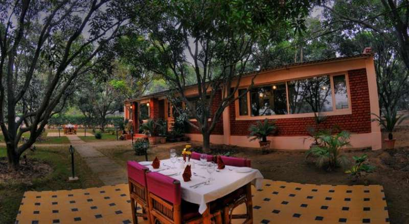 Baghaan orchard retreat