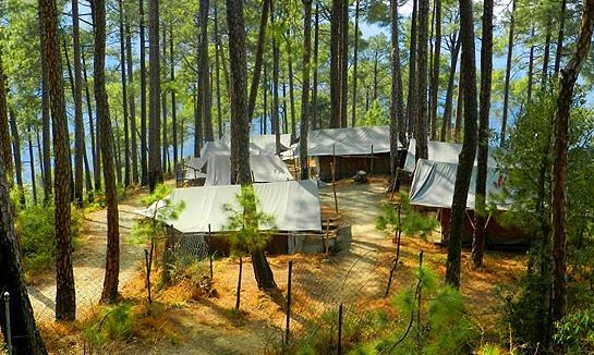 Camp Potter's Hill – Shimla_Holidify