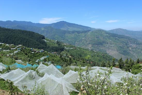 Banjara Camps – Thanedar_Holidify
