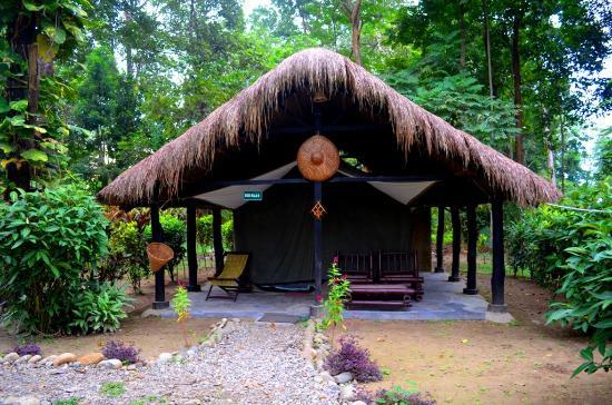 Nameri Eco Camp – Assam_Holidify