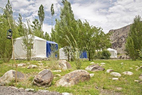 West Ladakh Camp - Ladakh_Holidify