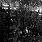 Haunted Places in Gujarat That May Scare You Witless!