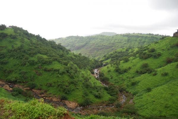 Bhatsa