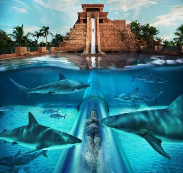 AquaVenture Water park, Top Adventure Activities In Dubai