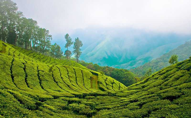 Kerala, India Tourism (2019) > Travel Guide, Best Places, Packages
