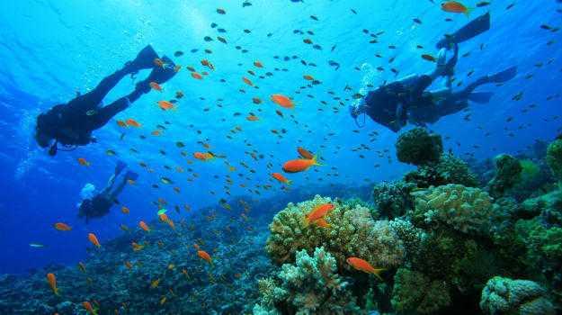 water sports in kerala, scuba diving