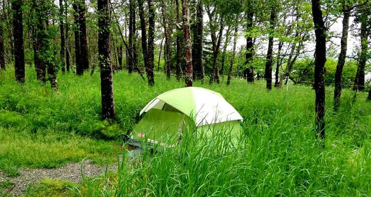 Coorg, Camping in Bangalore