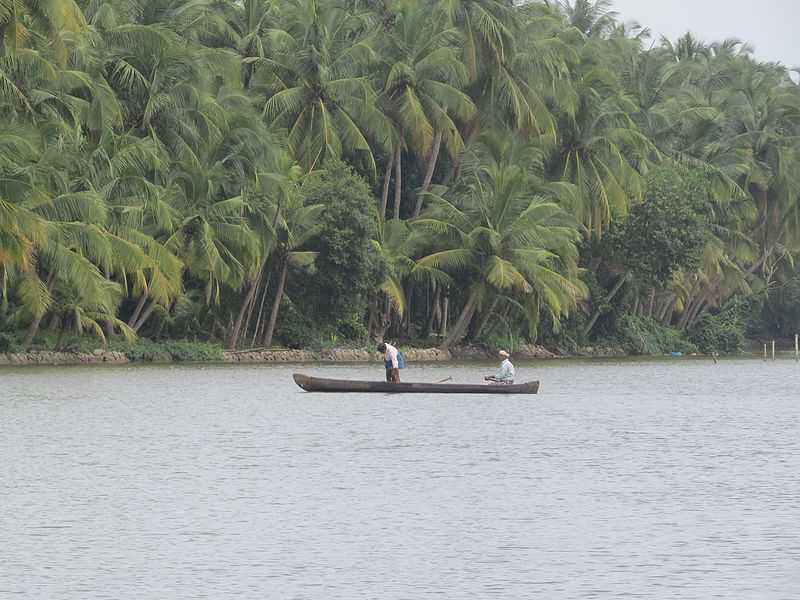 Kerala Backwaters, Kavvayi Backwaters Stretch