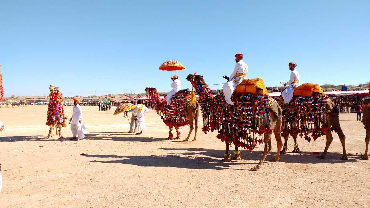 Bikaner Camel Festival is one of the magnificent and interesting  traditional festivals of this wonderful country. The Royal Rajasthan is  full of regal ...