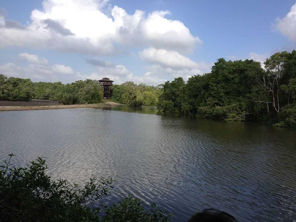 Sungei Buloh Wetland Reserve, Wildlife of Singapore