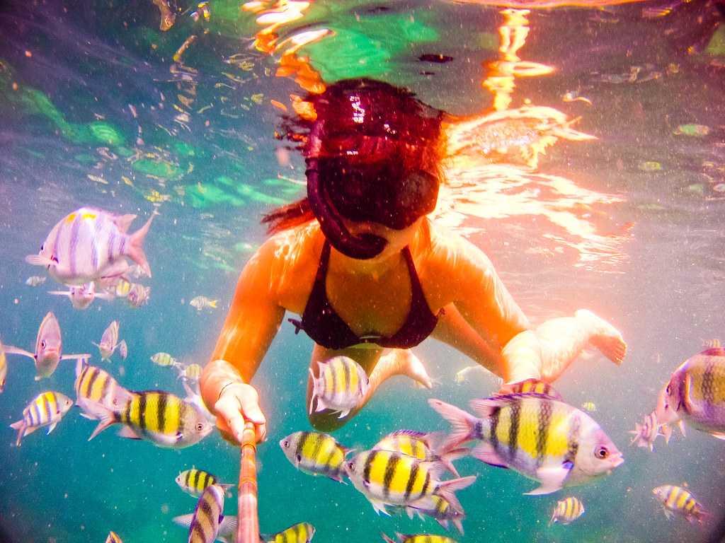 Snorkelling in Raya Islands, Phuket