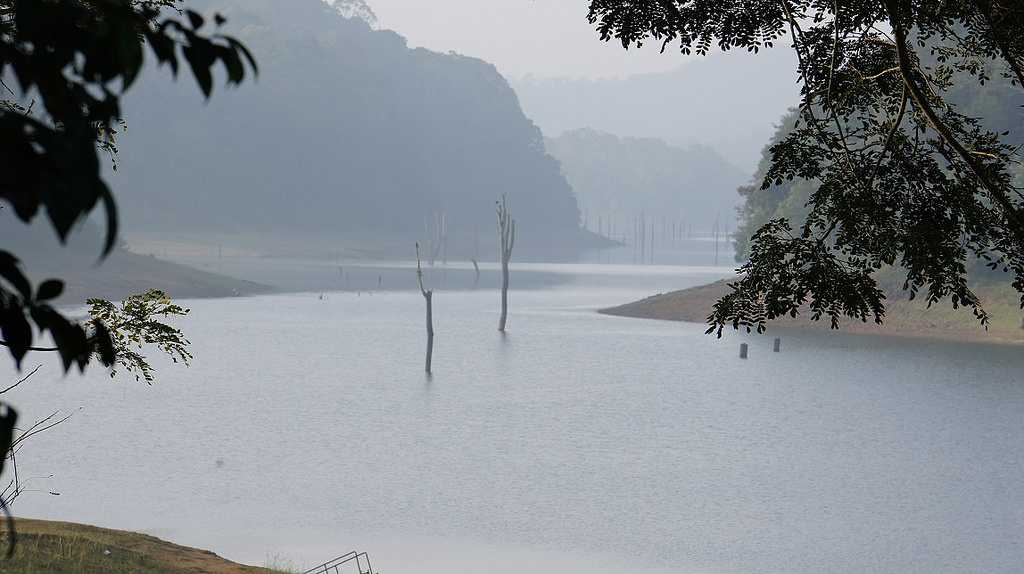 Periyar Tiger Reserve in Winter