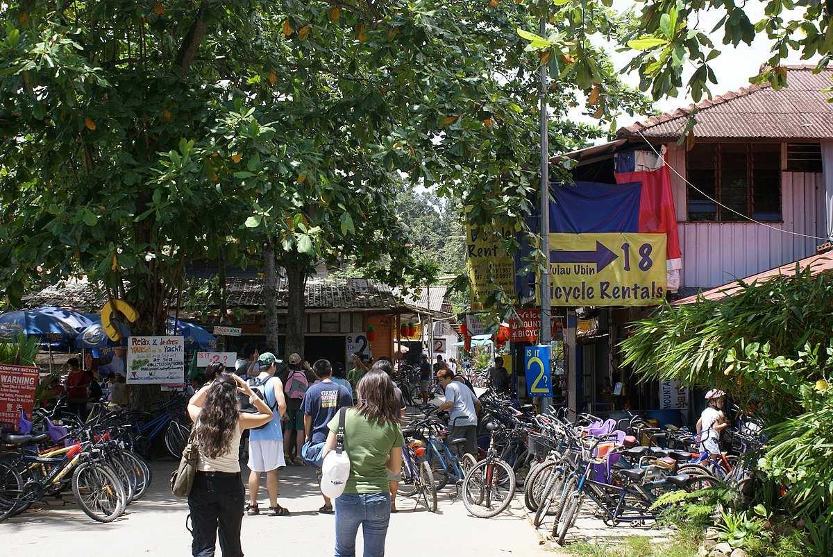 Cycle Rental Shop