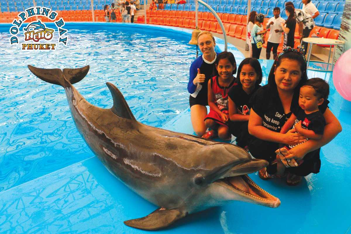 Photos with the Dolphins at Dolphins Bay, Phuket