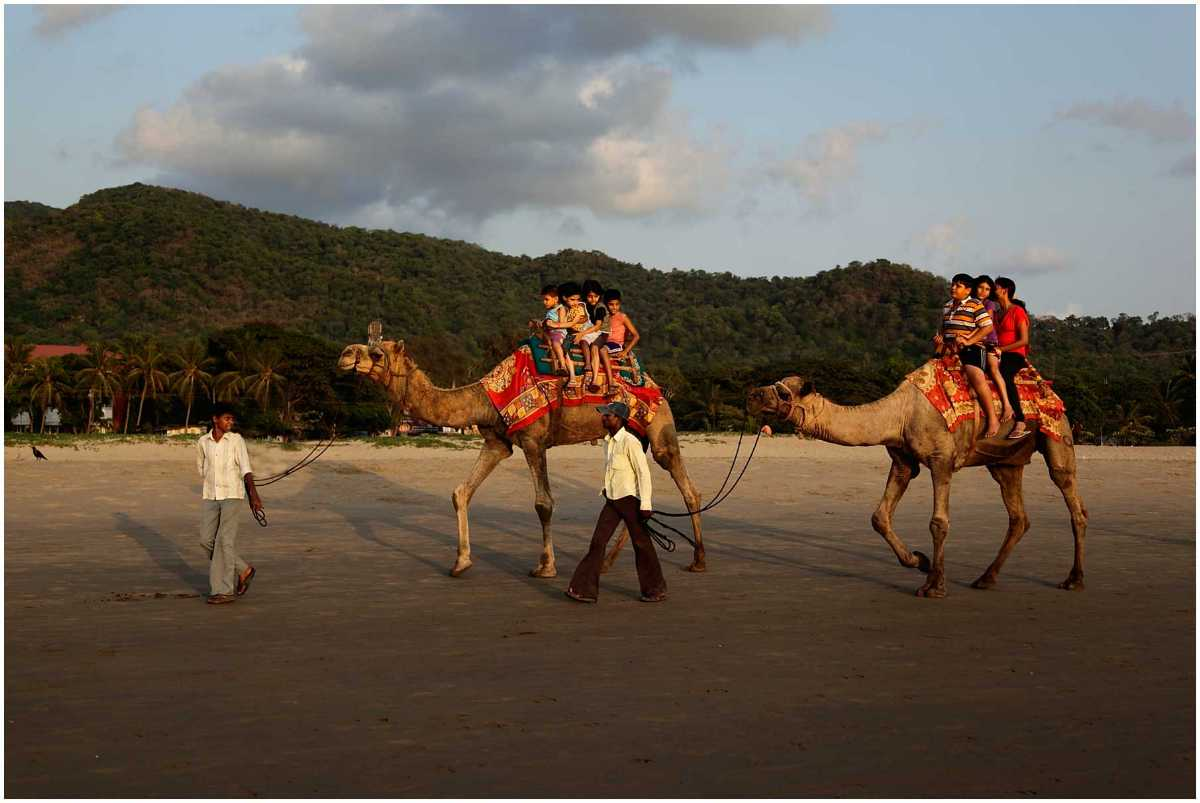 Camel ride at Ganapatipule sea beach