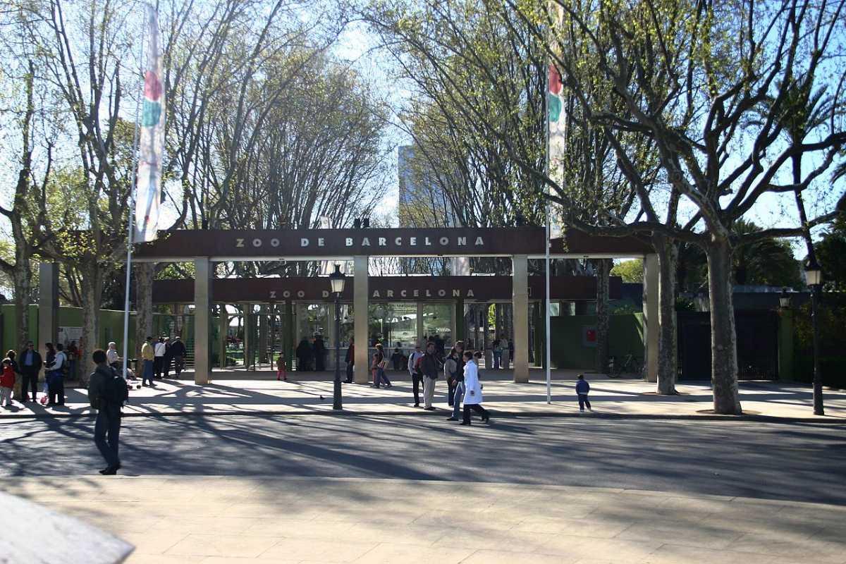 Parc De La Ciutadella Zoo