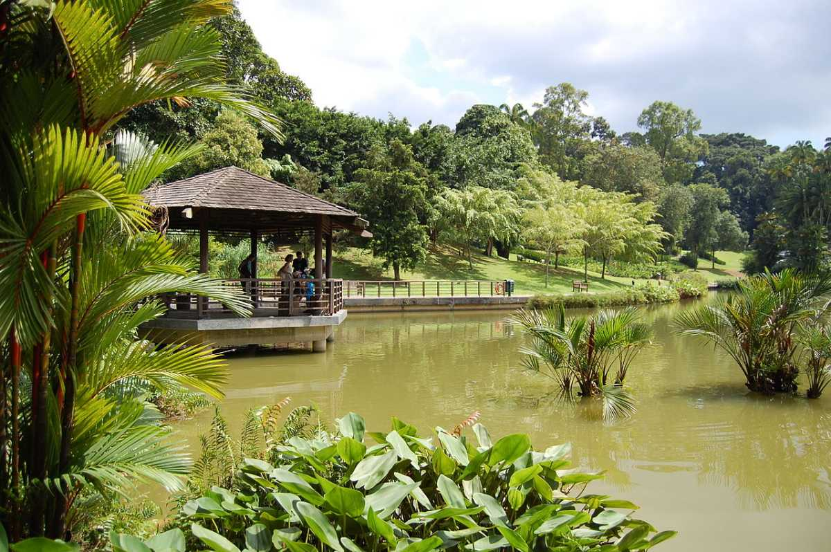 Symphony Lake at Botanical Gardens in Singapore