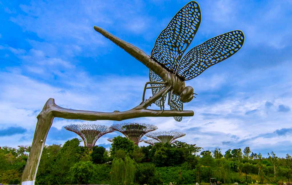 Dragonfly and Kingfisher Lake at Gardens by the Bay