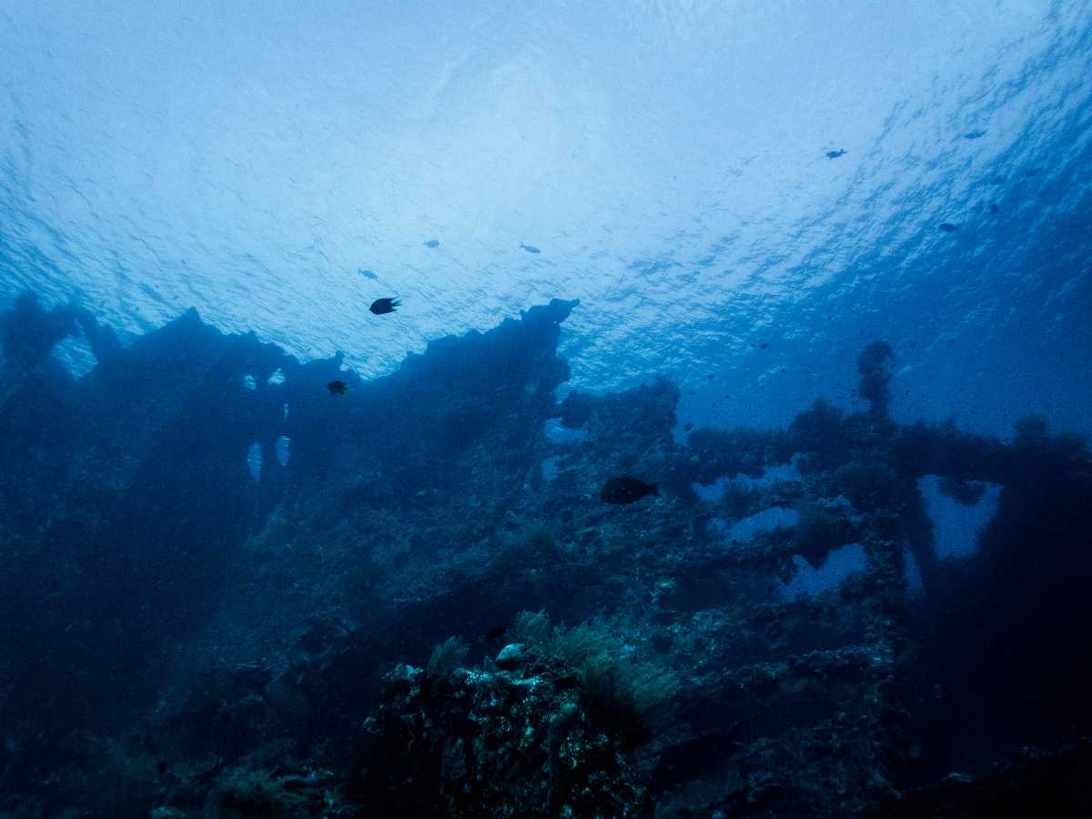 Scuba Diving in Bali, Tulamben Beach