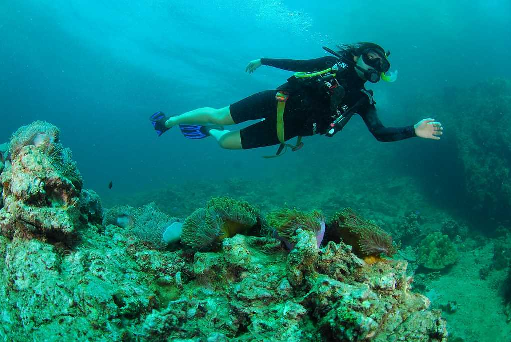 Scuba Diving near Laem Ka Beach