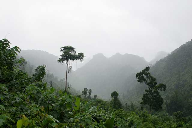 Cuc Phuong National Park, Trekking in Vietnam