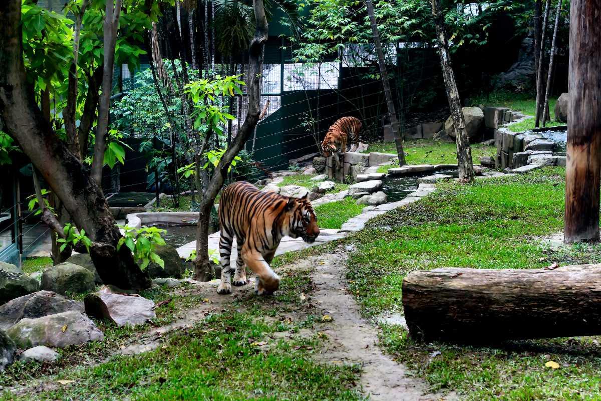 Sunway Lagoon Theme Park, Kuala Lumpur