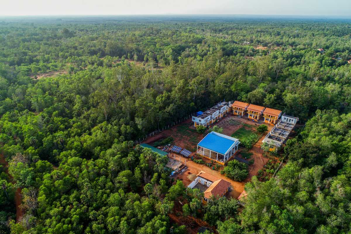 Forest homestay in Auroville