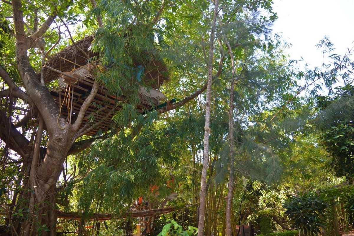 Tree house at Namaste Yoga Farm