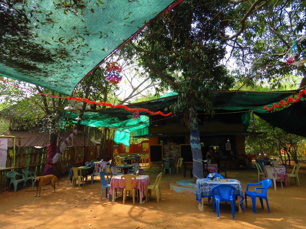 cafes in pondicherry, well cafe