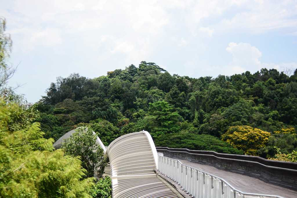 Cycling along the Southern Bump in Singapore