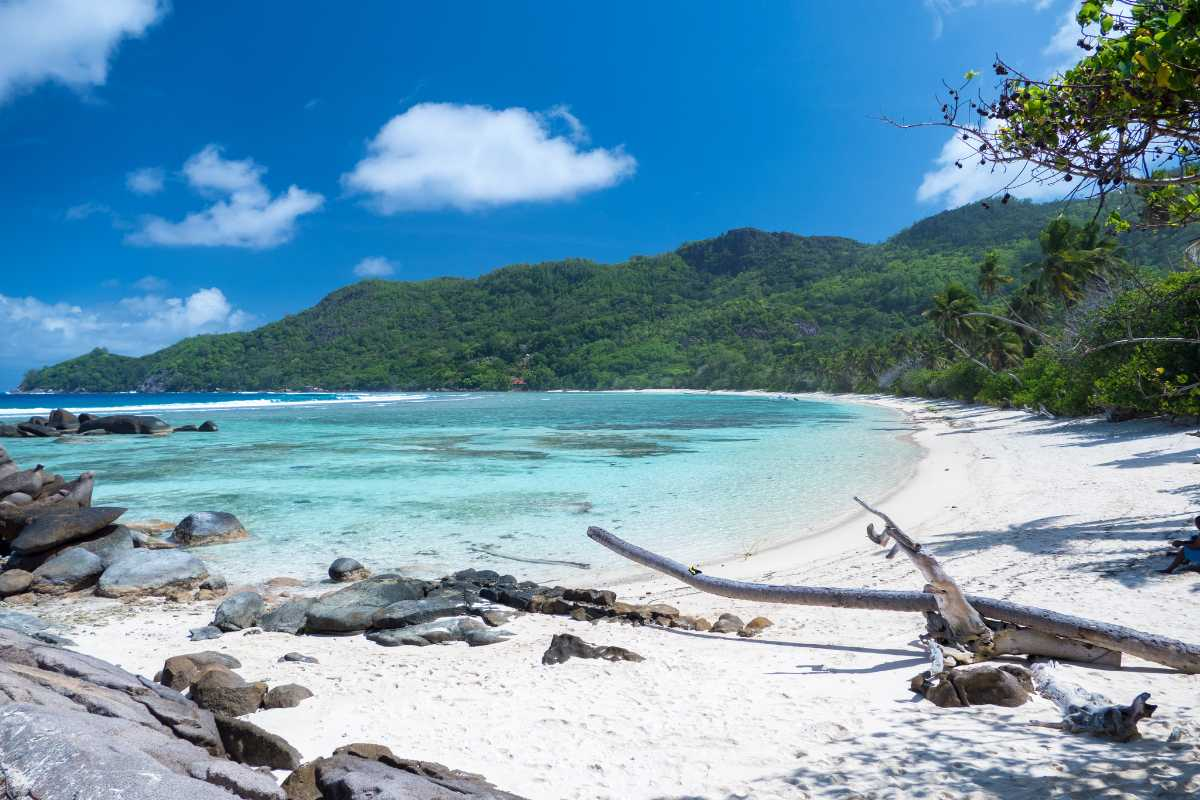 Anse Forbans Seychelles