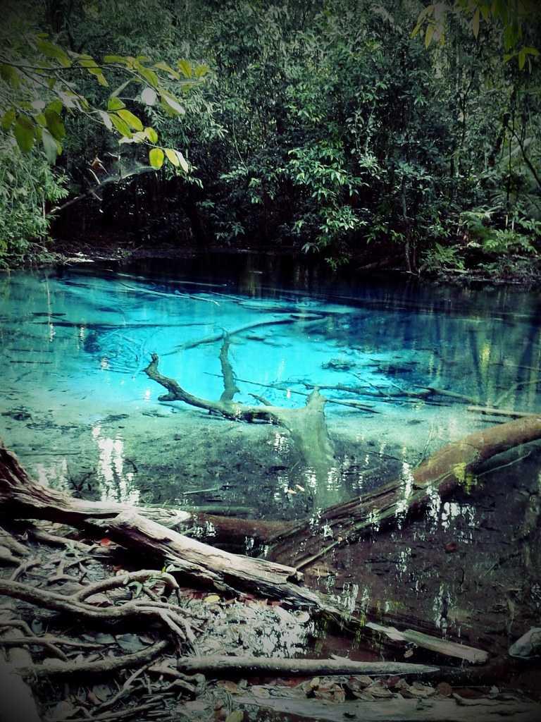 Emerald Pool at Krabi