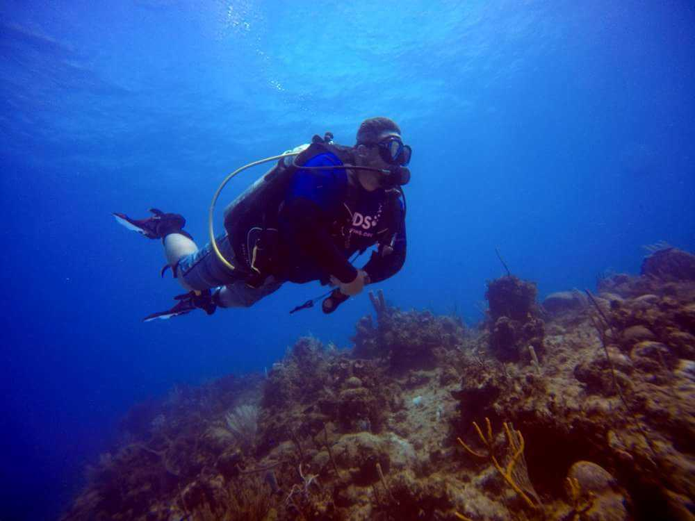 Scuba Diving in Cenderawaish Bay