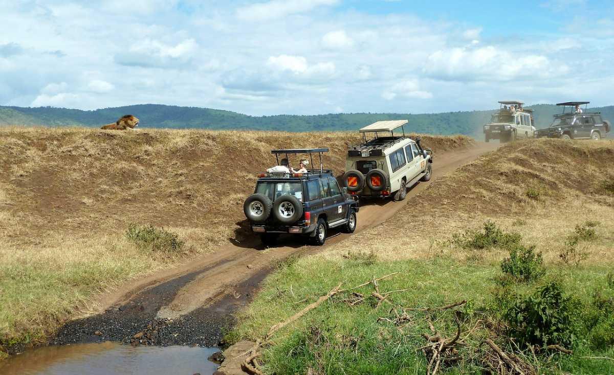 Mauritius Safari, Introduction