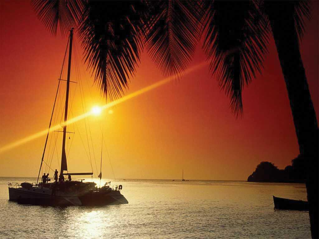 Catamaran Cruise