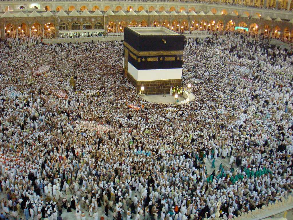 Hajj 2019 - Pious Pilgrimage to Makkah Madina