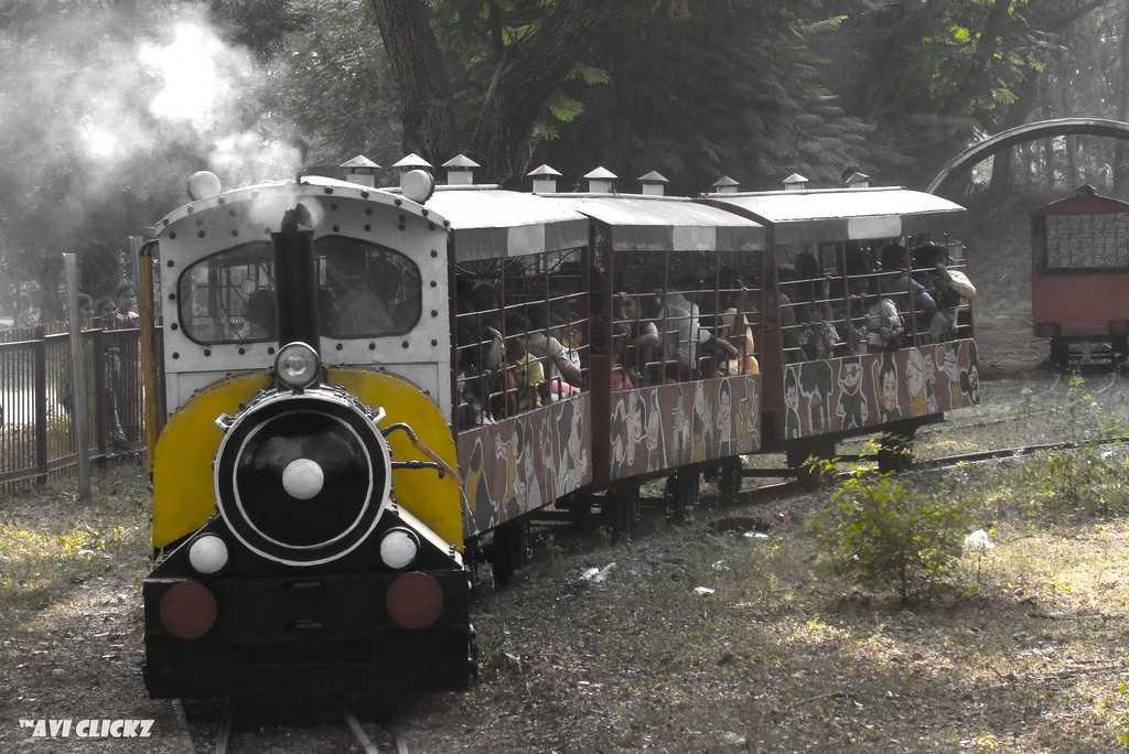 Toy train at Maitri Bagh