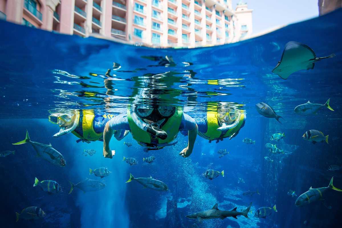 Snorkeling at Atlantis Palm, Snorkeling In Dubai