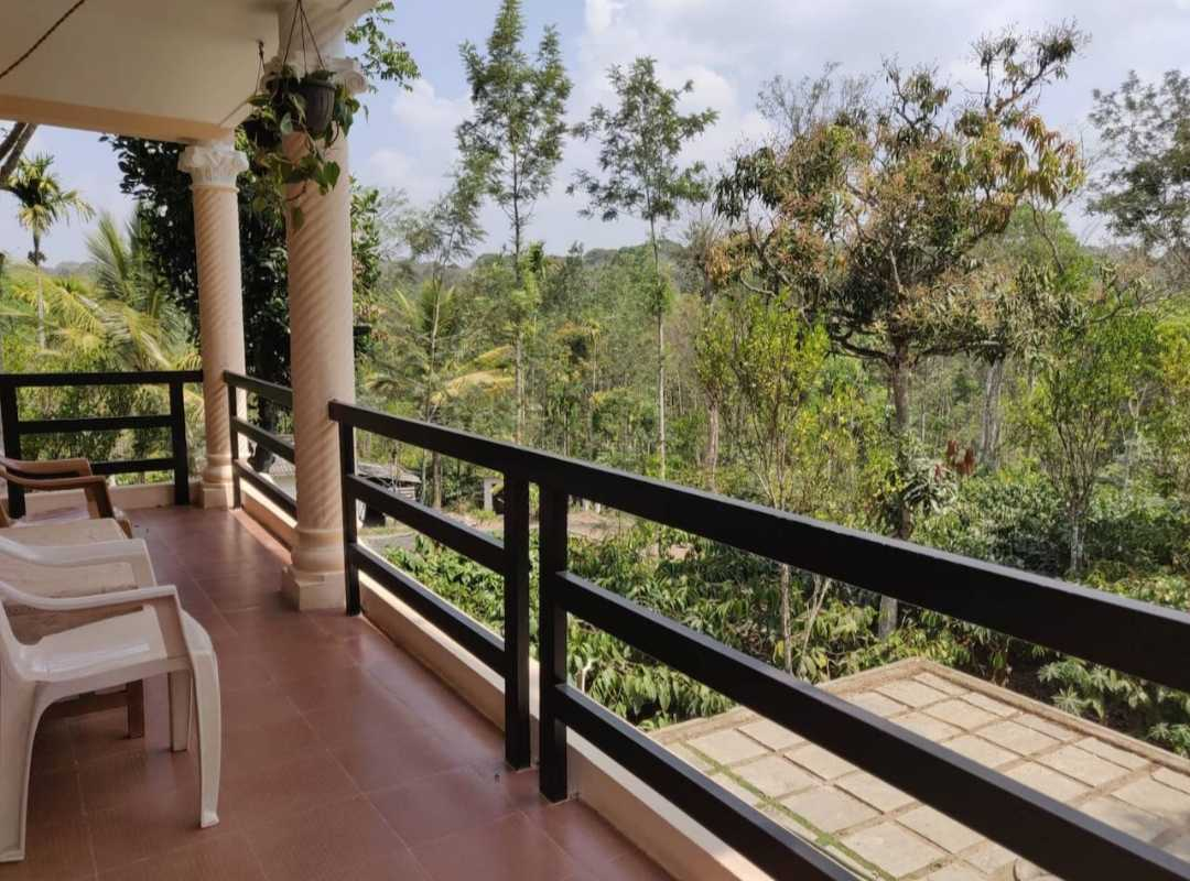 View of forest from the balcony