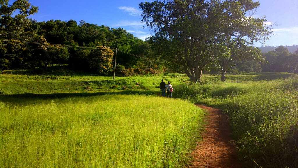 Swamimalai Hills, Yelagiri