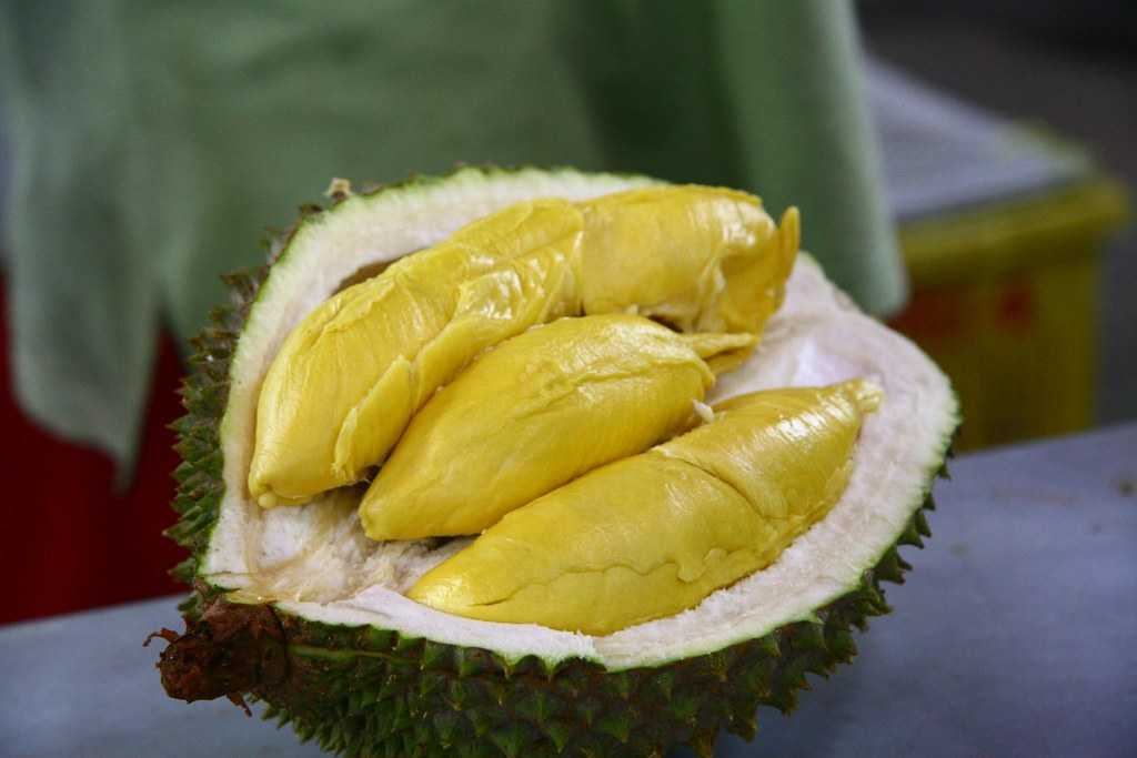 Durian, Dishes of Singapore