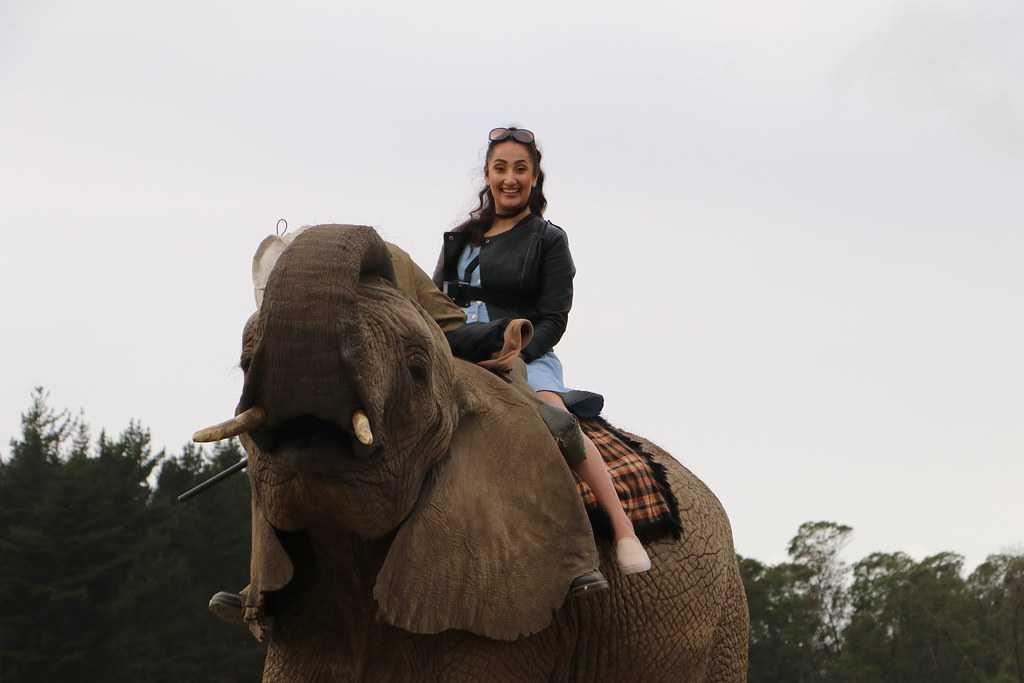 Elephant Ride in Bali