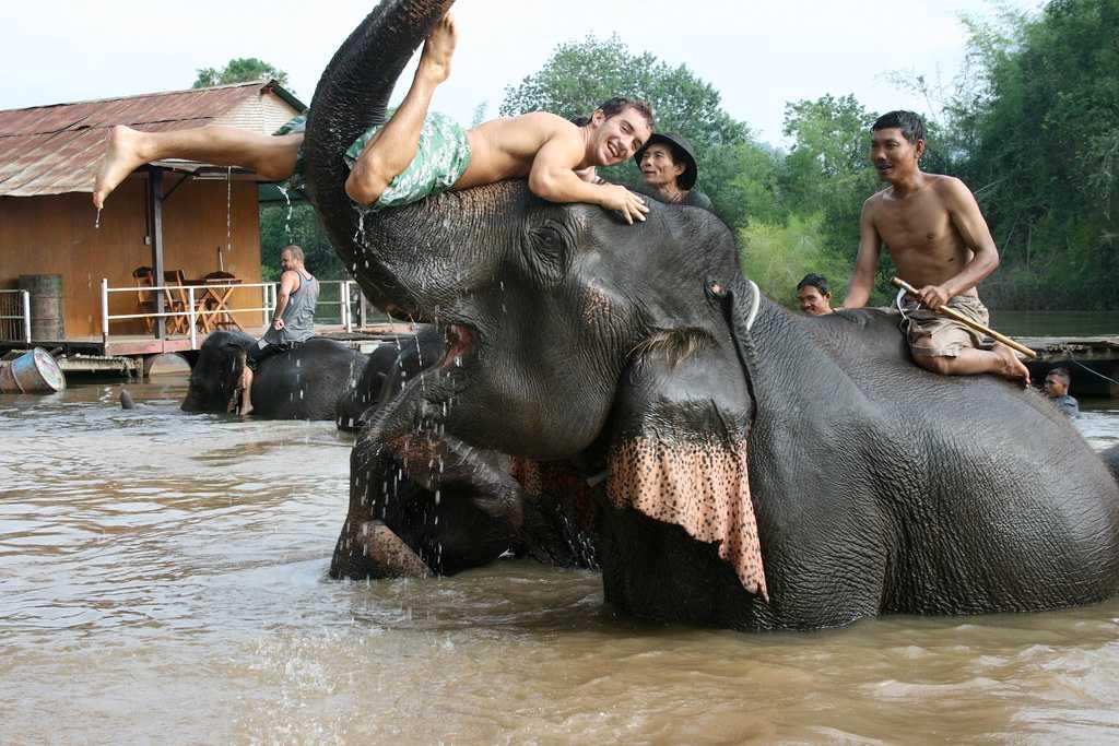 Elephants bathing in Kawai River