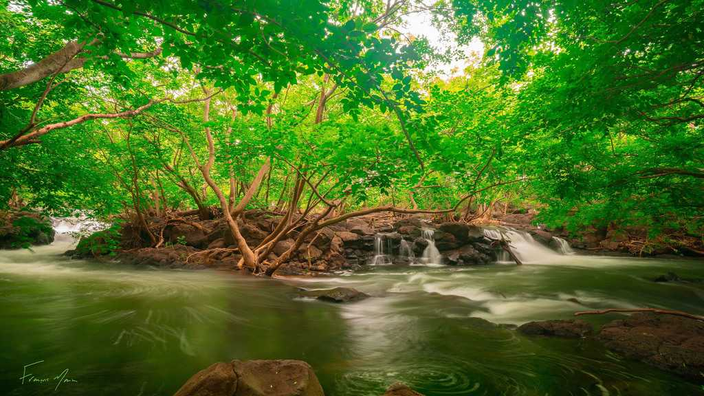 Riviere Papayes, Papaya River, canyoning in Mauritius, excursions in Mauritius