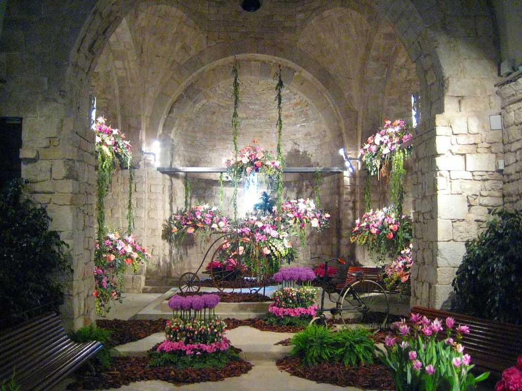 flowers, church, colourful, girona